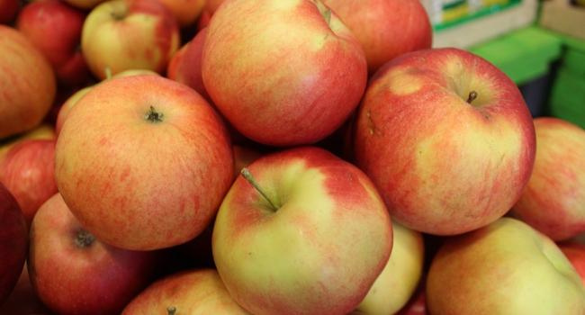 Польские яблоки уничтожили в Кургане