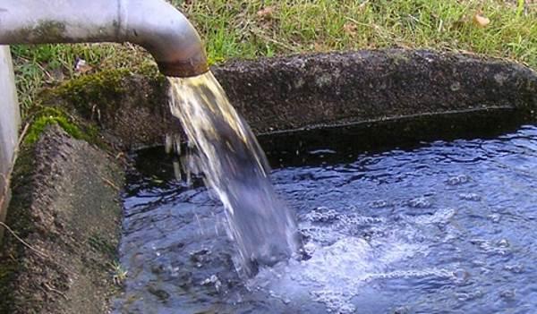 Администрацию Кургана уличили в сбросе сточных вод в Битёвку