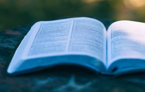«Школа молодых литераторов» ждет зауральцев