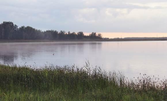 Посёлок возле озера Медвежье хотят сделать привлекательным для туристов